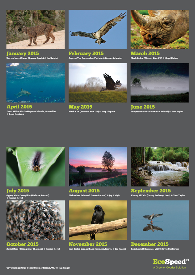 EcoSpeed 2015 Calendar