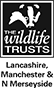 The Wildlife Trusts Lancashire Manchester & North Merseyside logo