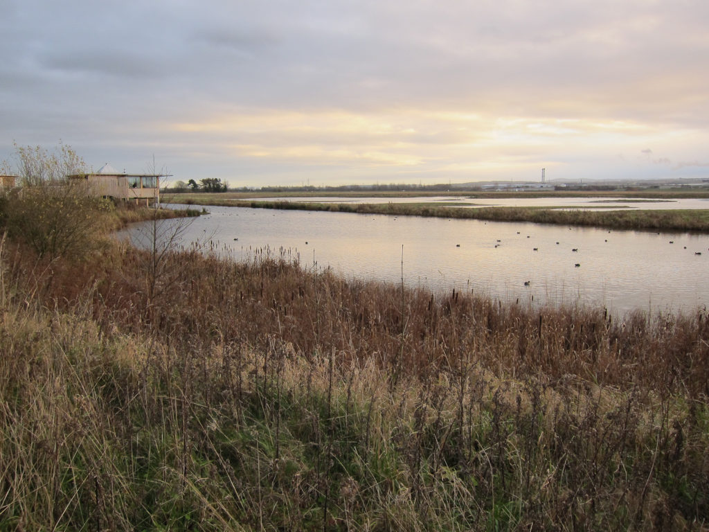 Burton Mere Wetlands