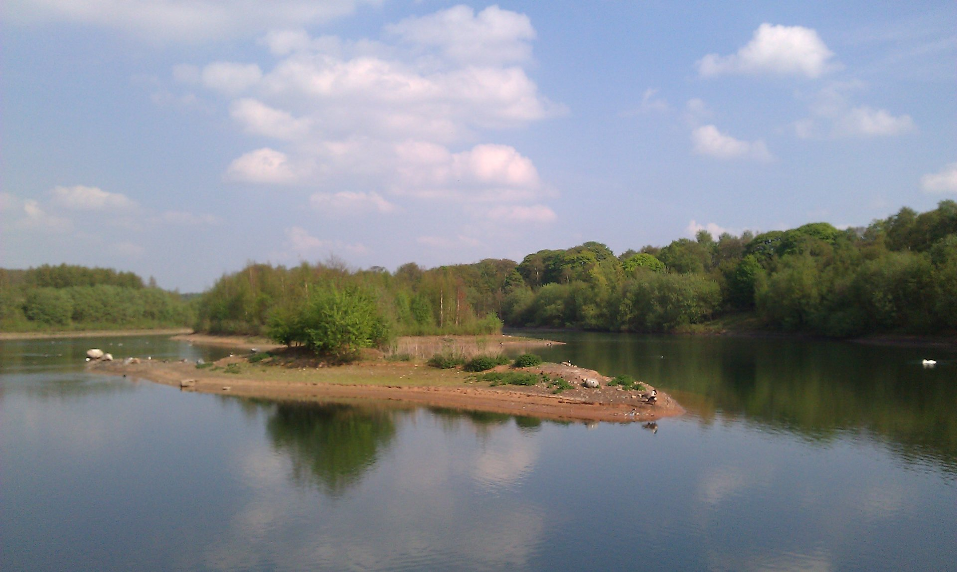 Moore Nature Reserve