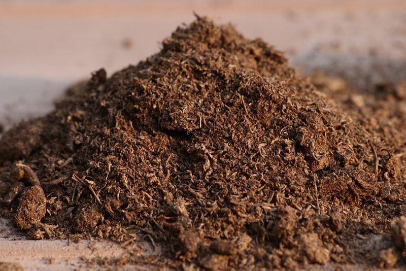 Peat Compost