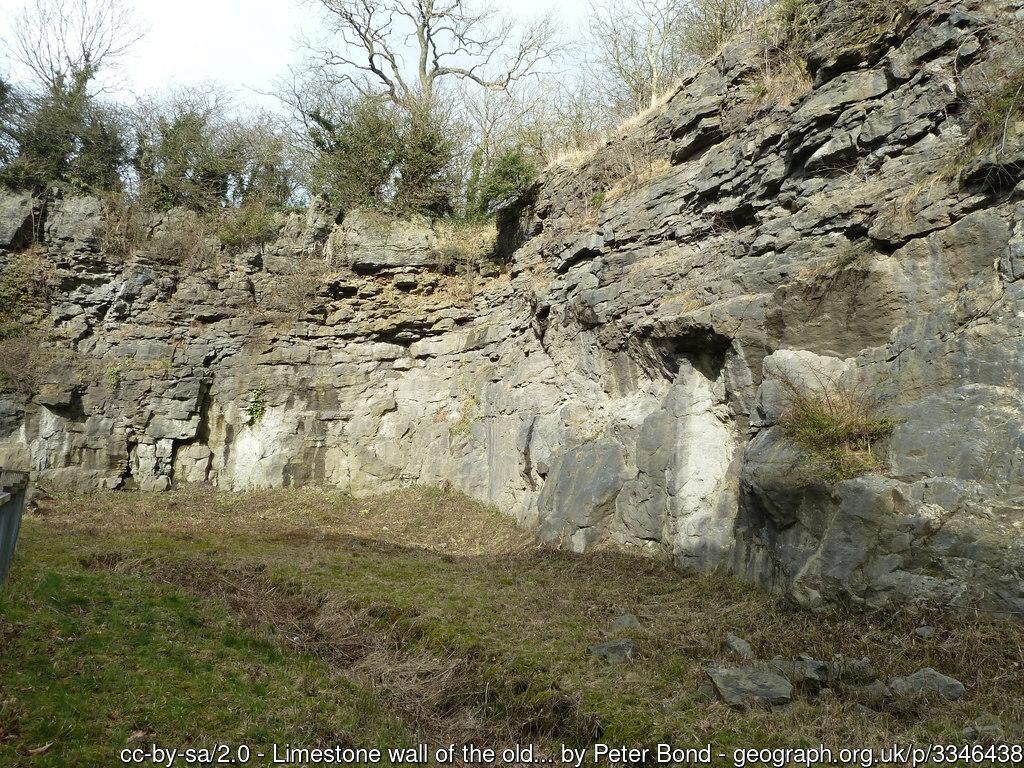 Salthill Quarry Nature Reserve