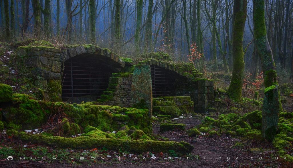 The ruins of Wheelton plantation/Brinscall woods